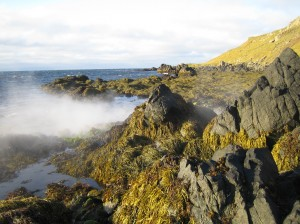 Hot spring at Skarð